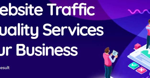 Best organic website visitor Traffic provider